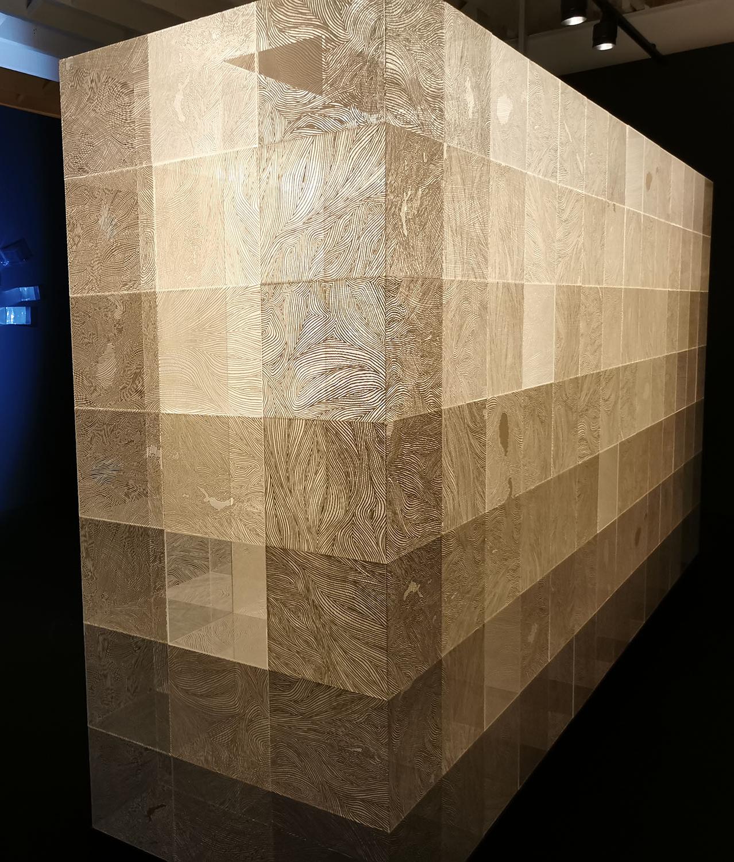 SYDNEY. L'artiste japonais Shinji Ohmaki, White Rabbit Gallery